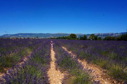 5 plekjes die je moet bezoeken in Zuid-Frankrijk